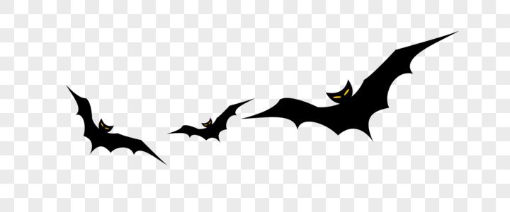 万圣节蝙蝠图片