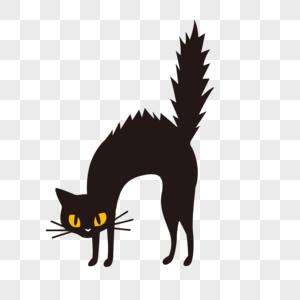 万圣节黑猫图片