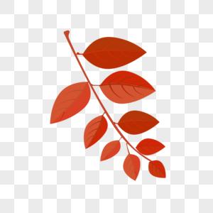 水彩叶子图片