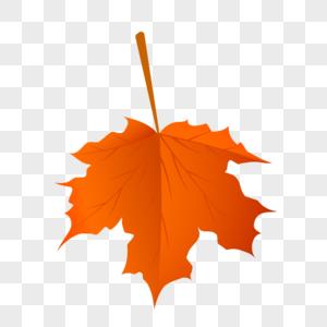 水彩秋天叶子图片