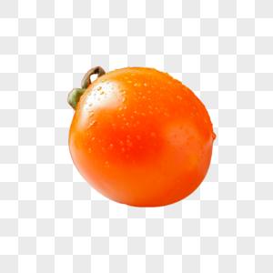 长寿果图片