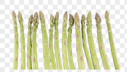 芦笋蔬菜图片