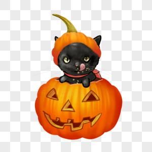 万圣节南瓜小黑猫元素图片