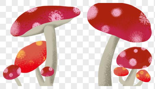卡通蘑菇素材图片