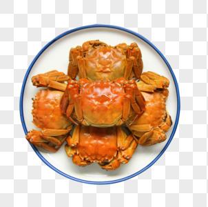 美味大闸蟹螃蟹图片