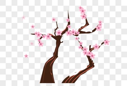 冬天的梅花图片