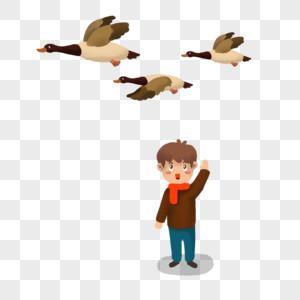 看大雁的小男孩图片