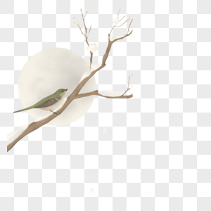 枝头的鸟儿图片