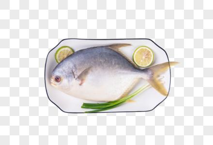 装在盘子里的鱼图片