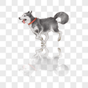 奔跑的狗图片