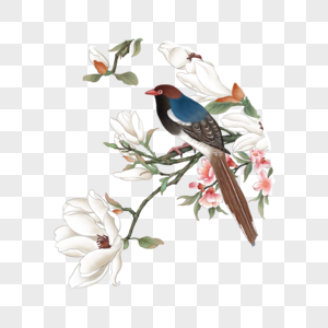 站在花上的鸟图片