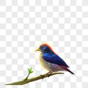 站在发芽树枝上的小鸟图片