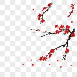 梅花枝图片