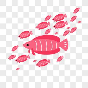 粉色鱼群图片