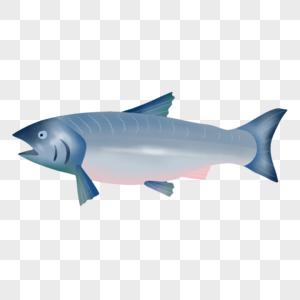 一条鱼图片