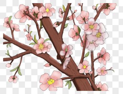 唯美手绘樱设计图片