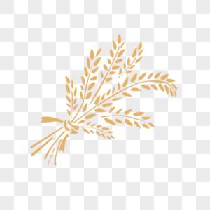 一束金黄色稻谷图片