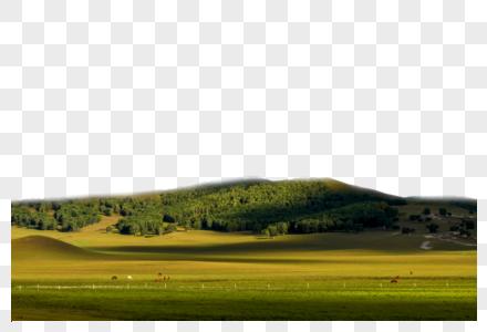 草坪山丘图片