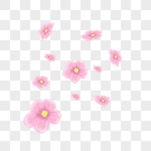 粉色花朵图片