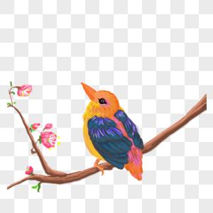 枝头鸟儿图片