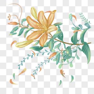 百合花枝图片