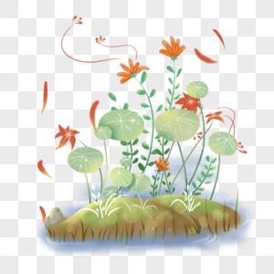 池塘边的花丛图片