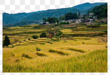 云南腾冲乡村风光图片