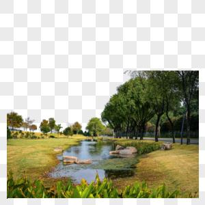 辰山植物园3号门路边的风景图片