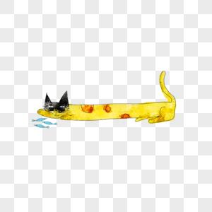 吃鱼的猫图片