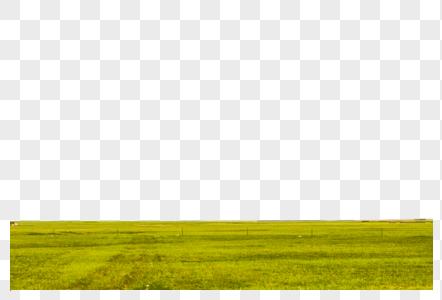 新疆高山草原图片