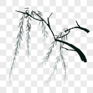 卡通植物柳树插图图片