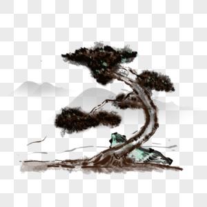 一棵古树图片