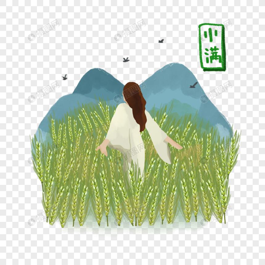 女生穿白色长裙走过稻田大自然清新节气小满夏日元素图片