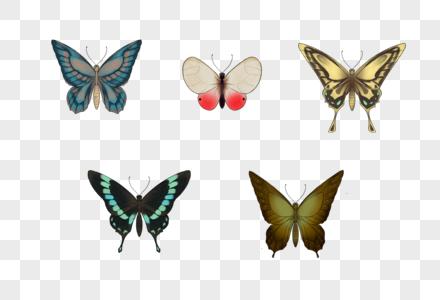 手绘蝴蝶免抠素材图片