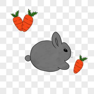 兔子吃胡萝卜图片