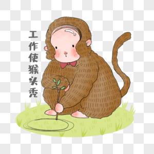 工作使猴头秃图片