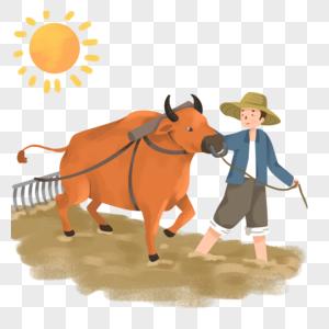 牵着耕牛犁地播种的农民图片