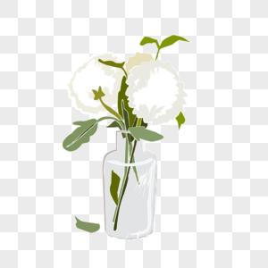 插在花瓶里的白车轴草图片