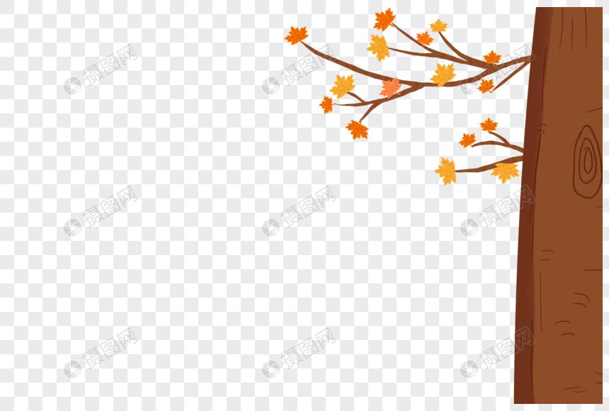 秋天树图片