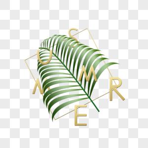 夏天绿植手写英文字体图片