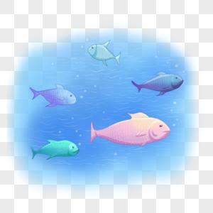世界海洋日鱼群图片