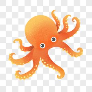 世界海洋日保护海洋动物章鱼图片