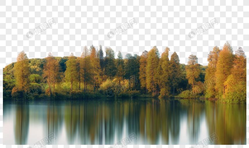 秋天湖边树林倒影图片