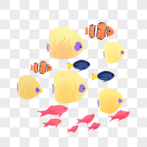 美丽的鱼群图片
