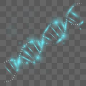 蓝色DNA图片