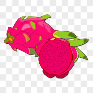 卡通手绘红色玫红色切开水果火龙果图片