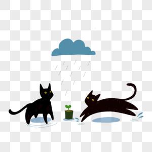 雨天黑猫小草图片