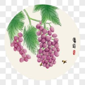 中国风写意葡萄图片