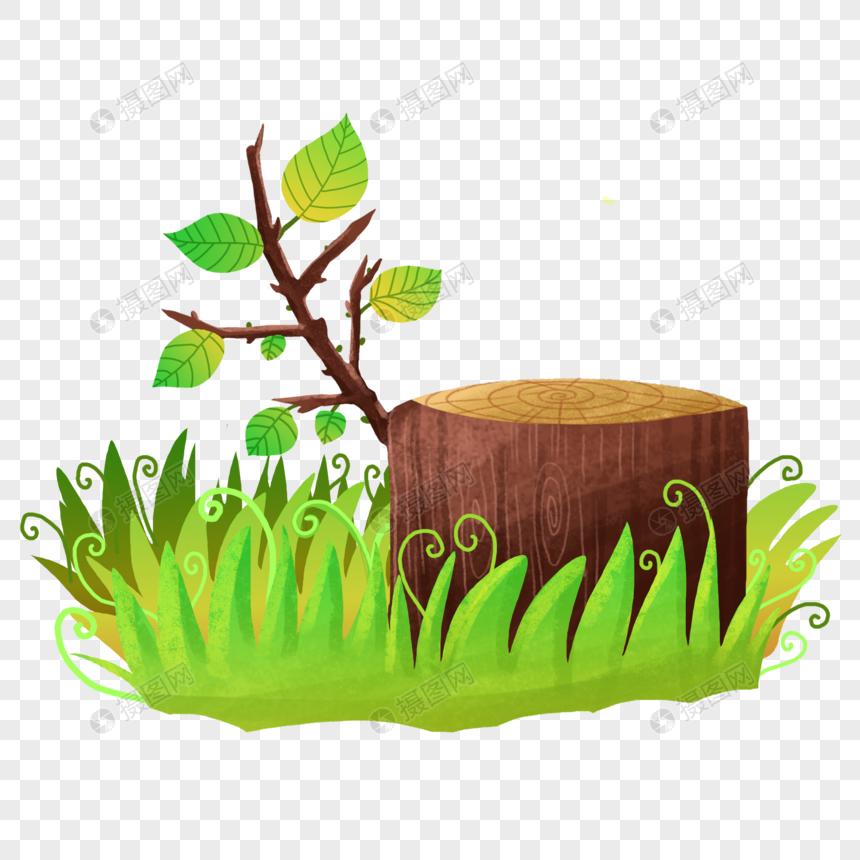 森林保护图片