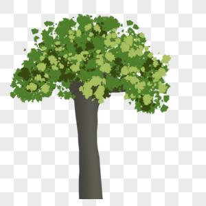 绿色的树图片